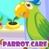 Parrot Care