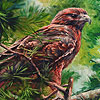 Alone mountain hawk puzzle