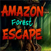 Amazon Forest Escape