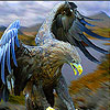 High mountain hawk puzzle