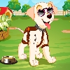 puppy dress up games