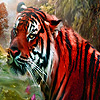 Red wild tigers puzzle