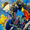 Tropical colorful fishes puzzle