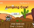 Jumping Cow!